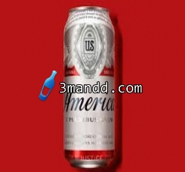Budweiser Can 33cl x 24